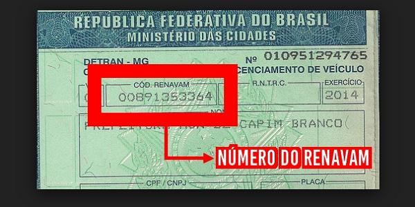 Número do Renavam 2022